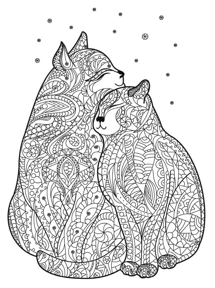 Magia Formelor Pisici Cărţi De Colorat Arthobbycreativ